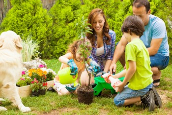 family-planting-a-tree