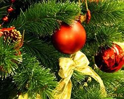 New Year 2014 glavnaya