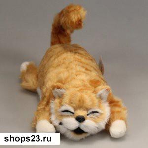 xoxochushhij-kot