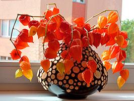 Vase-in-ecostyle